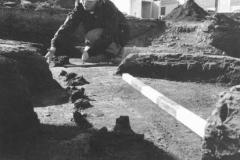 EPCOR-history-2001-archeology